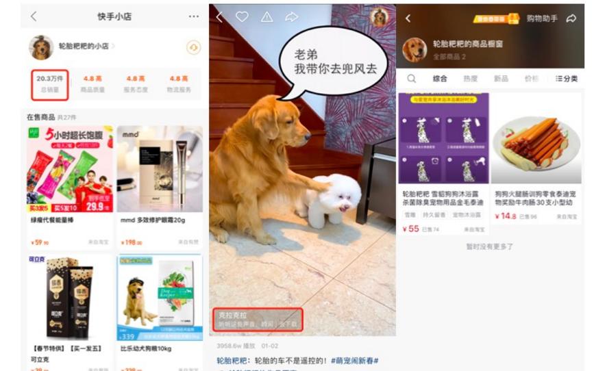 一个月<a href='http://www.mcnjigou.com/?tags=3'>抖音</a>短视频涨粉246万!宠物类短视频如何快速吸引眼球?